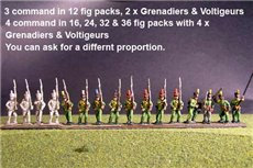 1st Rgt Marching, Centre Companies Tuft Plume, Grenadiers with Shako Chords & Voltigeurs with Plumet.
