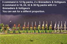 2nd Rgt Marching, Centre Companies Covered Shako, Grenadiers in Colpack & Voltigeurs Plume & Epaulettes.