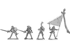 Dark Elf Swordmen Command Group