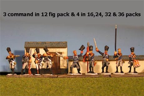 Prussian Line Infantry Firing Line with Command 12 figs