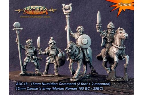 Numidian command (2 foot + 2 mounted)