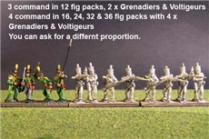 1st Rgt Firing Line, Centre Companies & Grenadiers with Tuft Plume & Voltigeurs with Plumet.