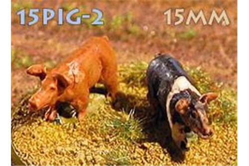 Domestic pigs (6)