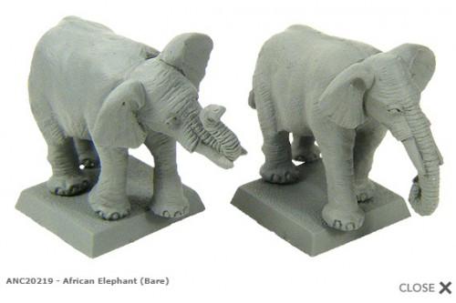 African elephant (plain) (2)