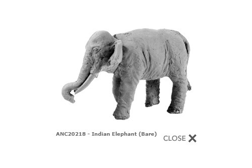 Indian elephant (plain) (2)